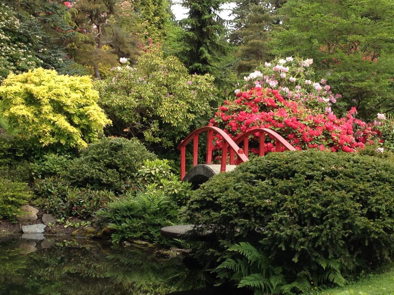 Kubuta Garden walk